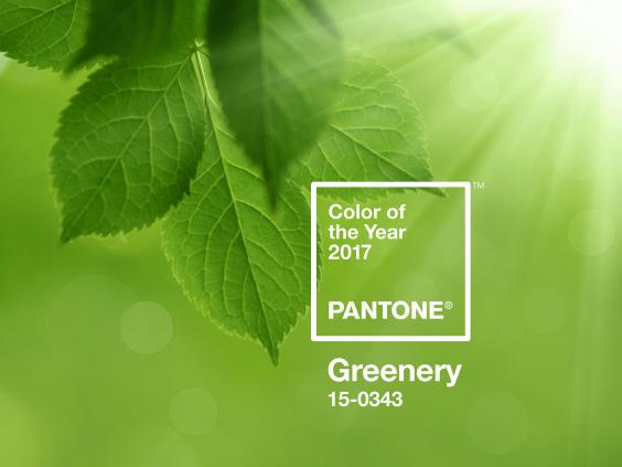 Pantone colour of the year announced and it's a shade of green
