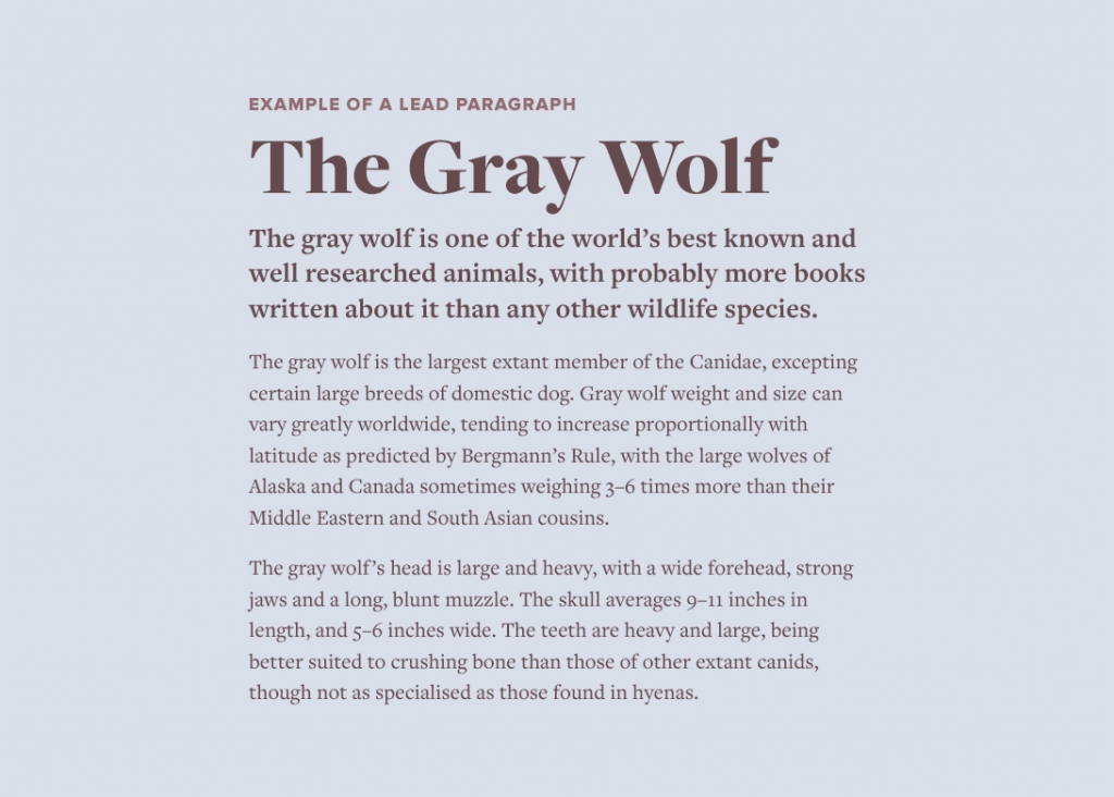 Typewolf's Flawless Typography Checklist is now available