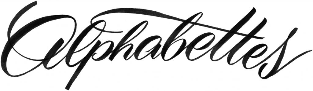 Alphabettes launched the Mentorship Program