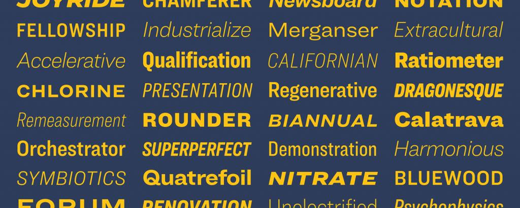 New font family Ringside = 172 styles by Hoefler & Co.